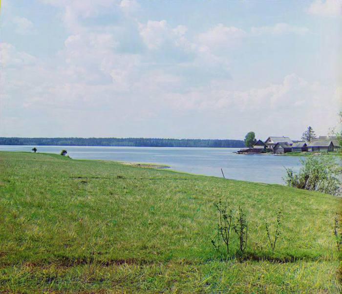 Выход Волги из озера Пено в районе деревни Изведово.