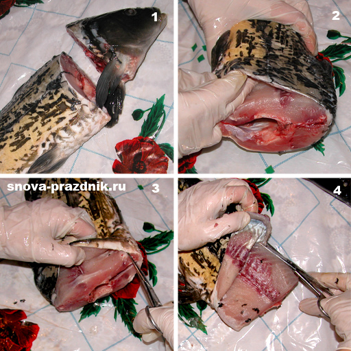 рыба в духовке пошаговые фото рецепты