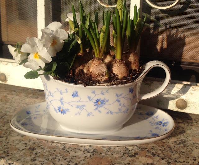 Продлеваем жизнь старой любимой посуде: идеи для посадки садовых растений