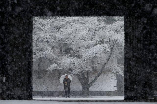 В Токио сотни водителей оказались заблокированы в тоннеле из-за снегопада