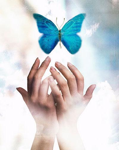 5320643_46579429_butterfly_20 (400x505, 35Kb)