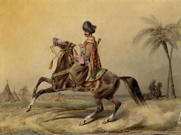Мамлюк. Финард Давид Ноэль Дьедонне, 1829 г.   Фото: museum.ru.