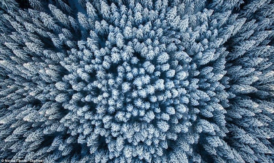 Лучшие фотографии зимы с высоты птичьего полёта