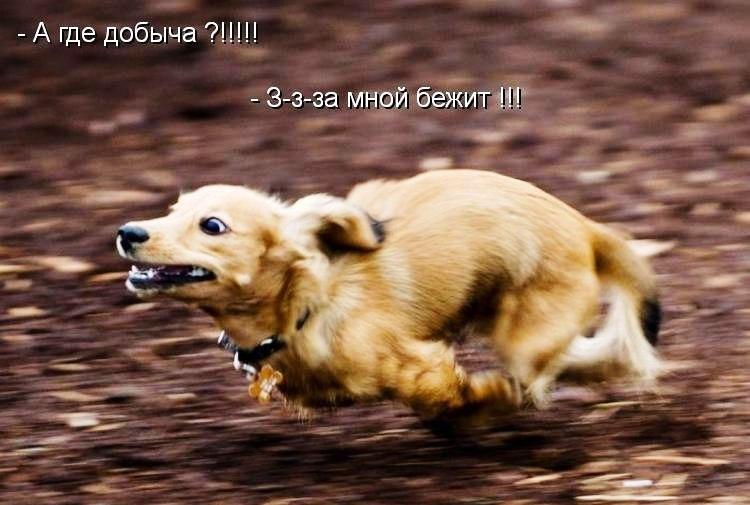 Когда нарвался не на того)))