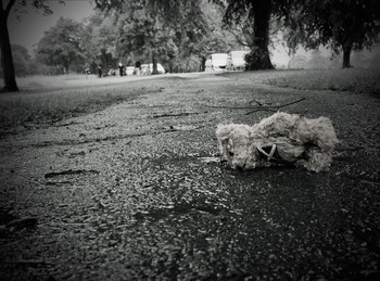 Тело ребенка, в гибели которого подозревают родителей, нашли в Волгограде