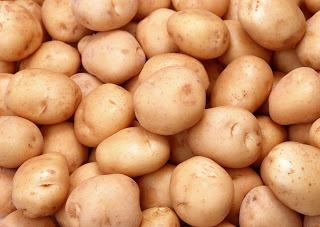Гигантский картофель в ящике - двухметровая ботва и большие клубни!