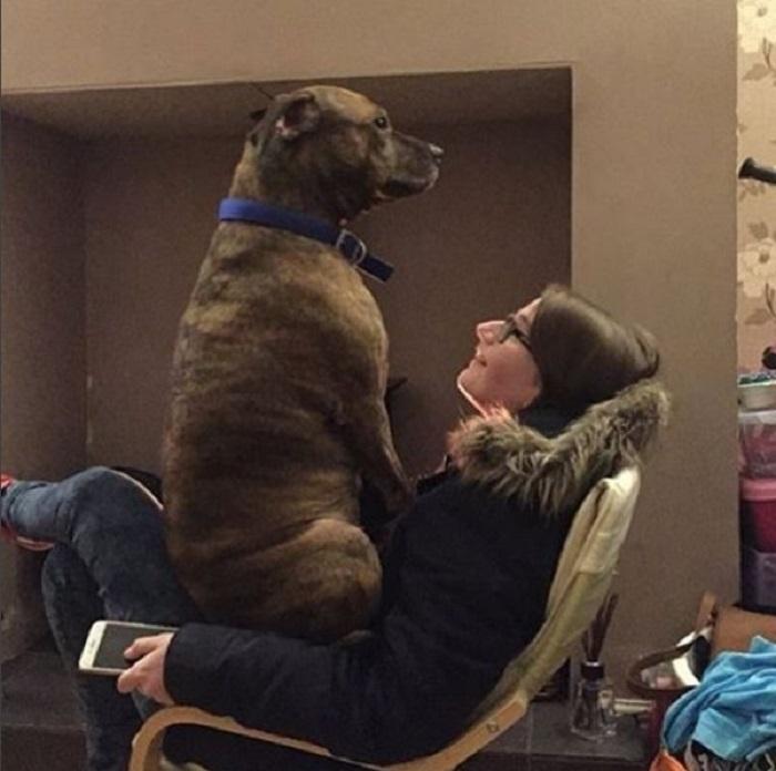 Ой, наверное я уже достаточно большой и тебе не удобно так смотреть телевизор?
