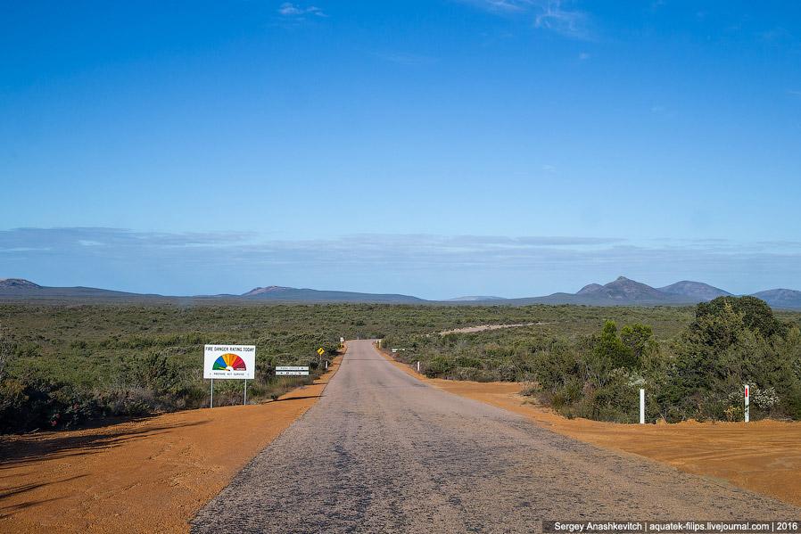 Пляж с кенгуру — одно из самых известных мест Австралии
