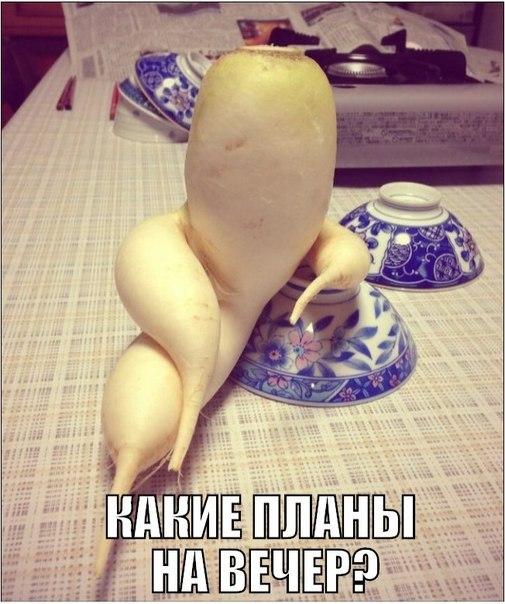 ПРИКОЛЬНЫЕ КАРТИНКИ С НАДПИСЯМИ.ЭДВАЙСЫ-37.