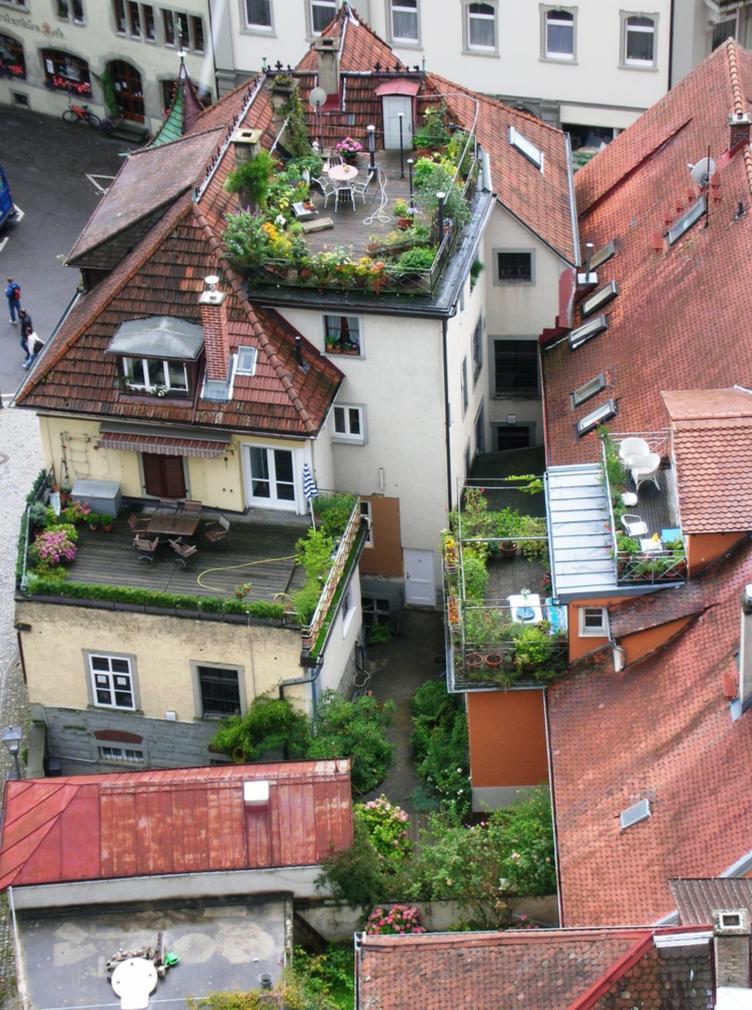 Сад на крыше дома дача своими руками.
