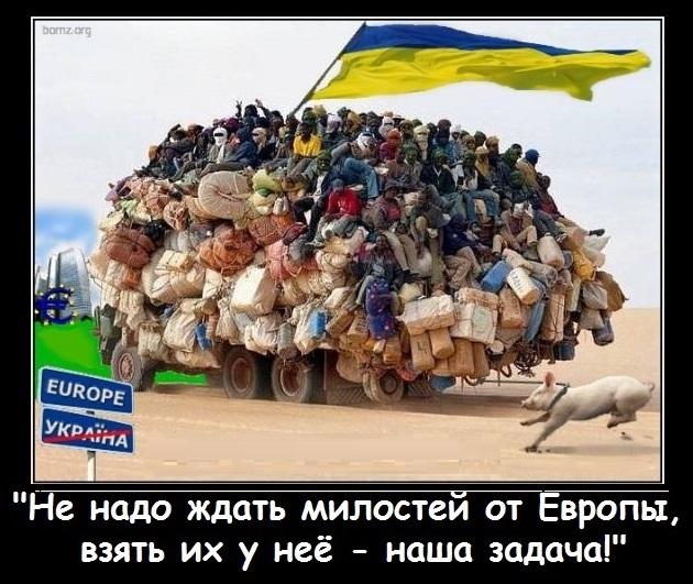 Украинцы обошли сирийцев по числу выданных разрешений на жительство в ЕС