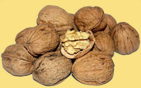 Сохраняйте перегородки грецких орехов - это целебное лекарство от многих болезней