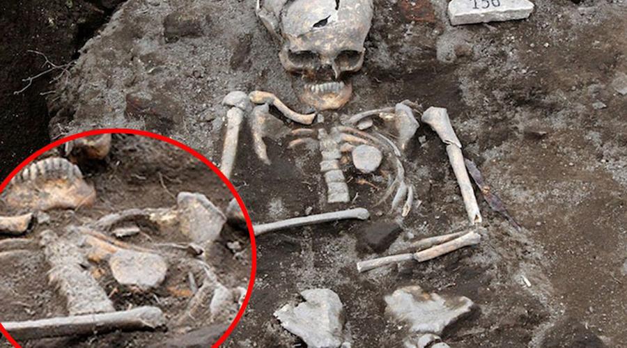 Реальные упыри: главные доказательства существования вампиров