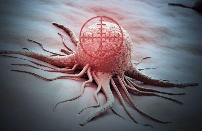 5 продуктов, убивающих раковые клетки