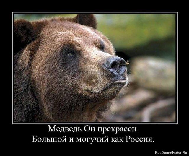 О нас, о Русских...