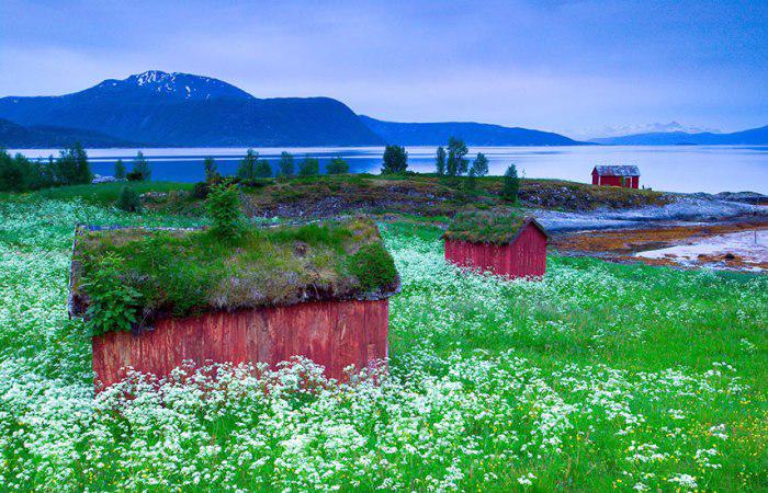Сказочные скандинавские домики, которые существуют в реальности