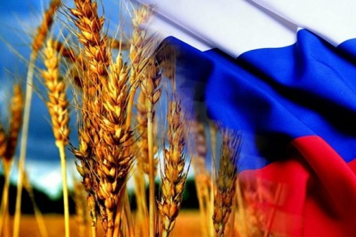 У России есть шанс подсадить мир на «зерновую иглу»