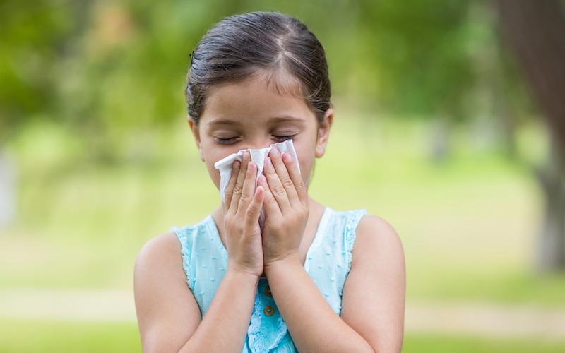 Как избежать обострения поллиноза у детей: советы иммунолога