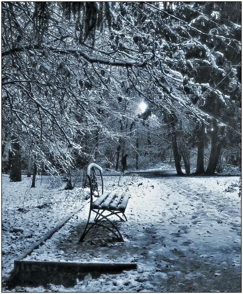 Зимний парк II