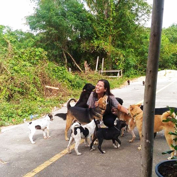 After This Woman Fed A Stray Dog, He Started Bringing Her Gifts Every Day