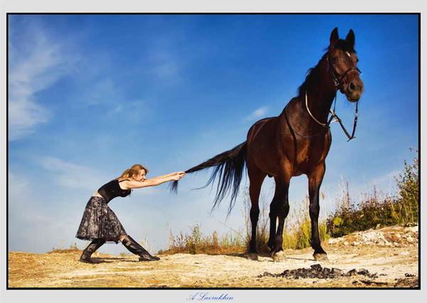 Не надо останавливать коня на скаку...