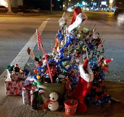 Сорняк превратили в новогоднюю елку и сделали звездой интернета