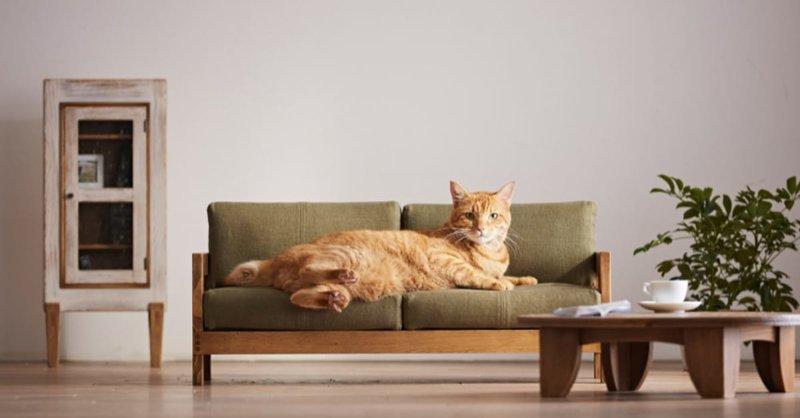 В Японии представили коллекцию миниатюрной мебели для кошек