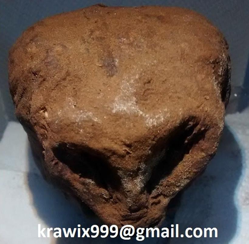 Мумифицированный череп гуманоида