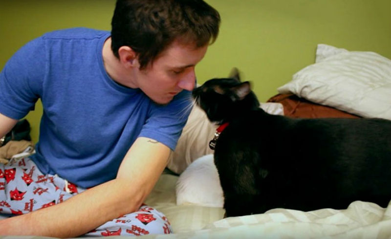 Бездомный кот бросился парню…