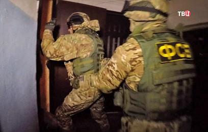 ФСБ задержала сторонников Мальцева за подготовку поджогов в День единства