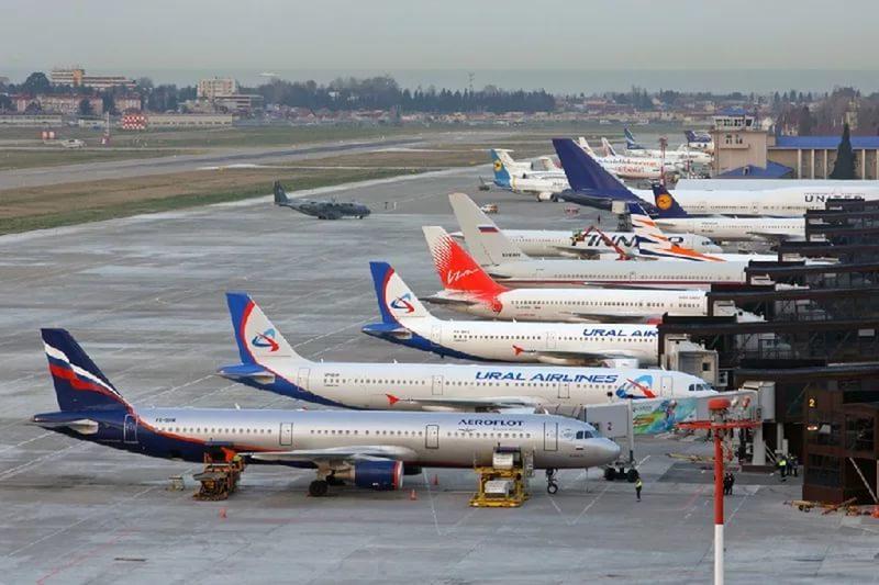 Сочи и Крым бьют рекорды продаж авиабилетов на февральские праздники