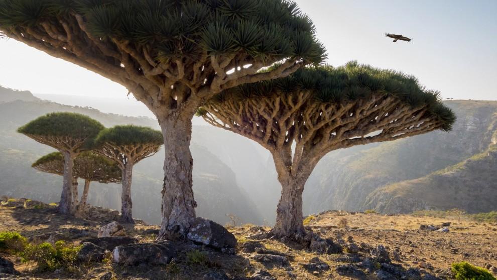 14 прекрасных туристических направлений, о которых вы вряд ли слышали