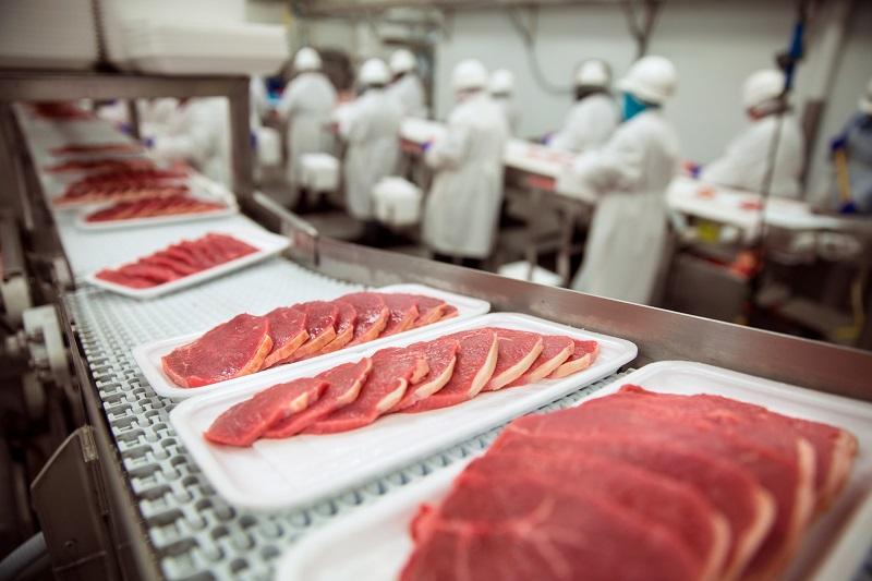 производство мяса в россии