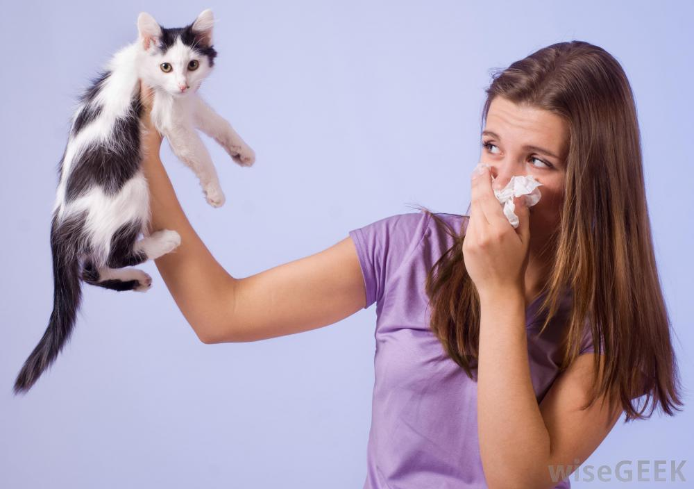 http://images.wisegeek.com/girl-holding-cat-in-hand-while-blowing-nose.jpg
