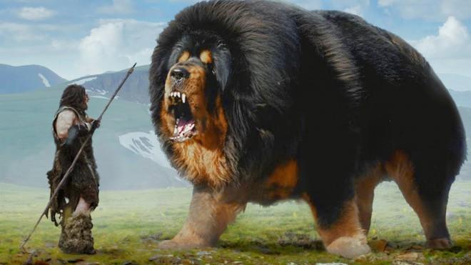 Собаки 10 тысяч лет назад