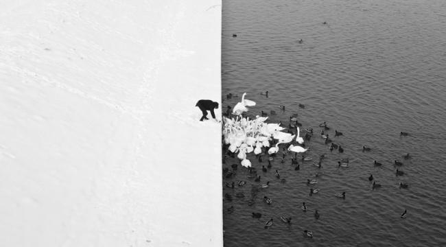Бесценные мгновения нашей жизни - Twisted Sifter подвел итоги первой половины года и выбрал лучшие фотографии