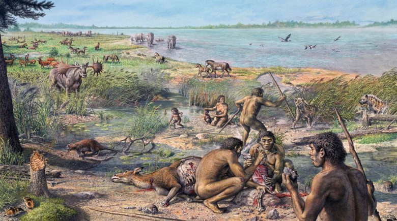 Древние люди страдали от мно…