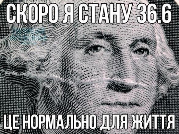 За три дня гривна обвалилась до параметров, не предусмотренных бюджетом Украины