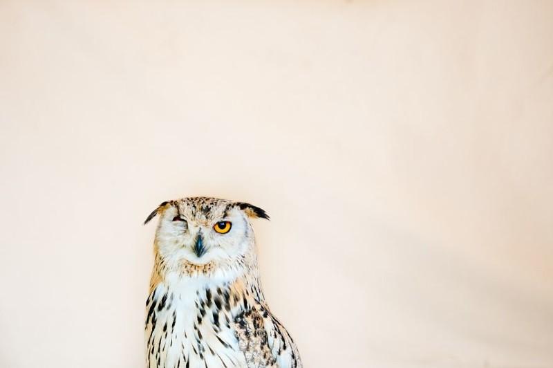 """Майкл Меллер, категория """"Пейзаж"""" искусство, конкурс, победители конкурса, творчество, фото, фотограф, фотография, фотоработы"""