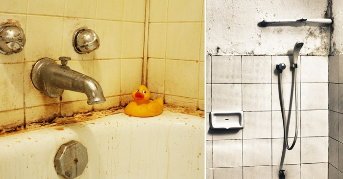 Ванна или душевая кабина: вы…
