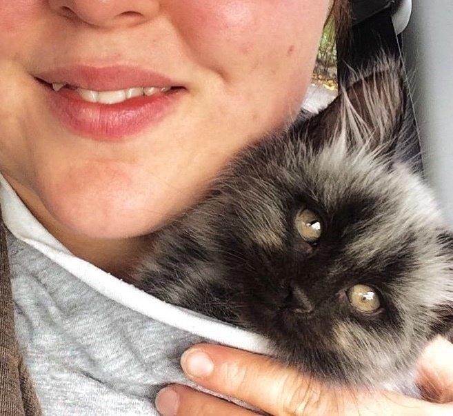 Спасенный котенок с необычны…