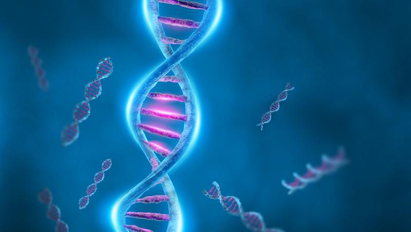 Война бактерий с вирусами, ДНК и лекарство будущего
