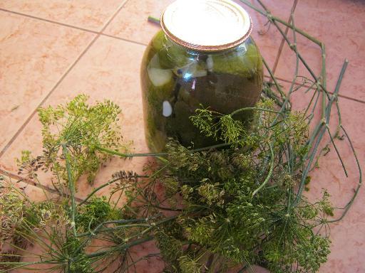 Рецепт огурчиков маринованных