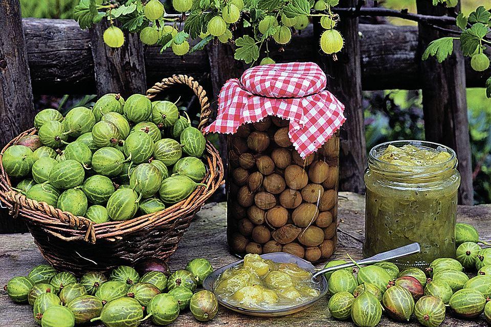 Варенье из крыжовника: Царское, с апельсином, вишневым листом, грецким орехом