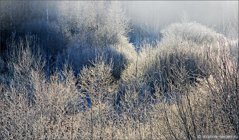 Сказочная осень в белом