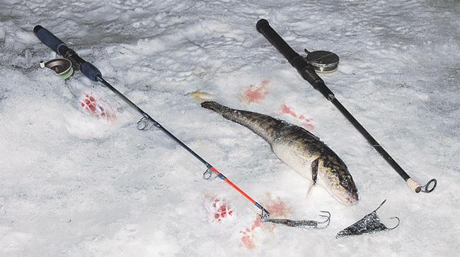 багрение рыбы с лодки