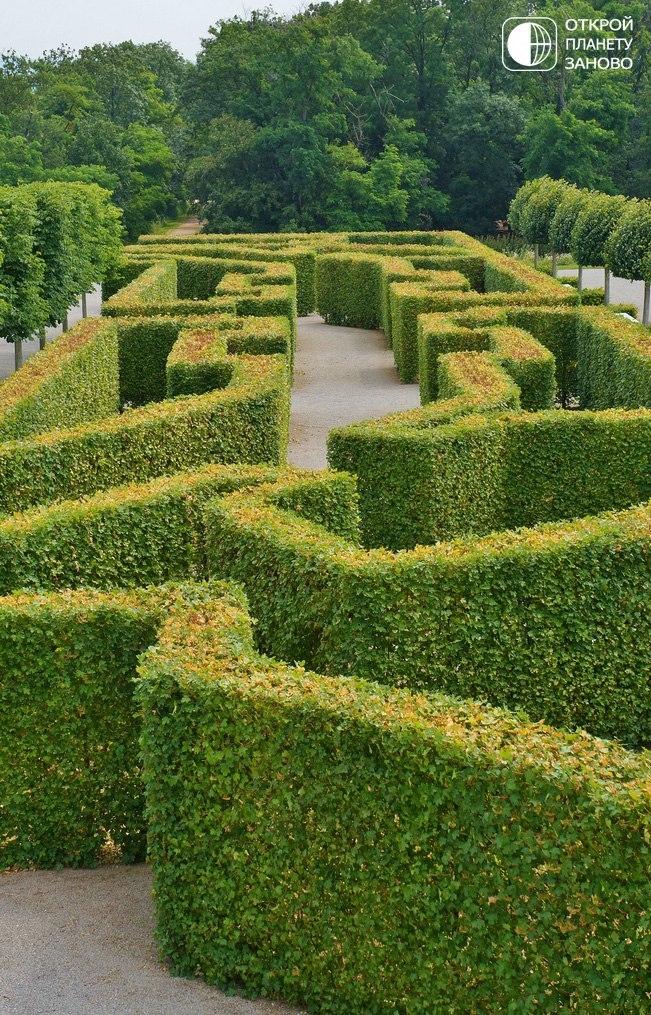 Дворец и сады Schloßhof