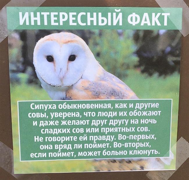 Парень развесил по всему зоопарку фальшивые факты о животных, чем очень повеселил посетителей