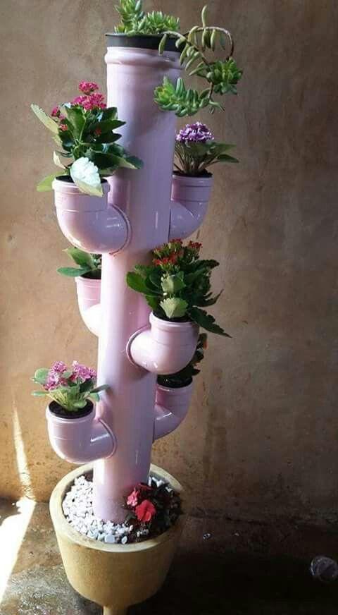 Горшечно-трубочное растение