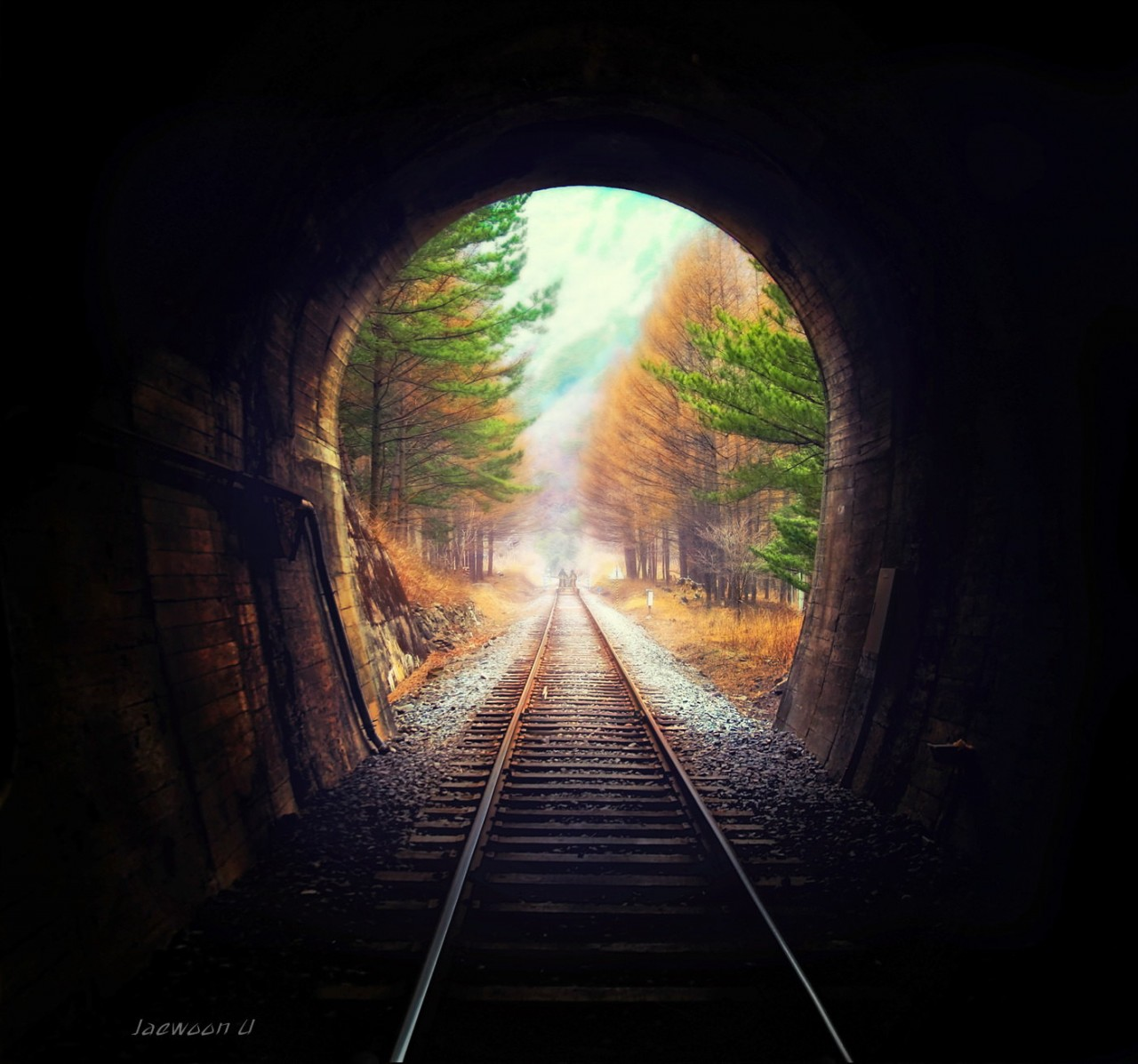 Фотография Into the light автор Jaewoon U на 500px